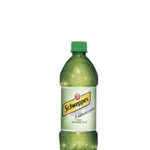 Diet Ginger Ale (Bottle)